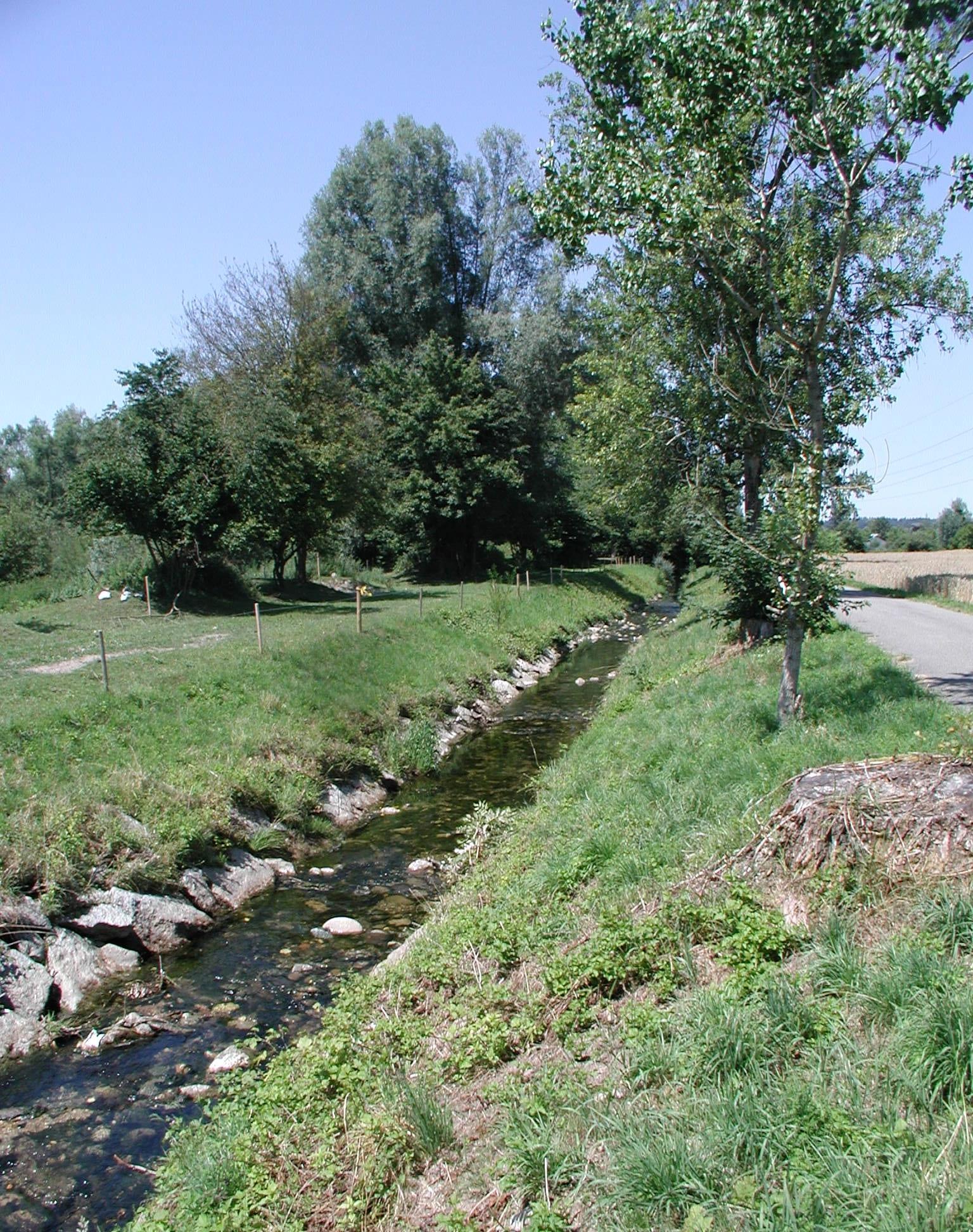 Fluss Bünz vor der Renaturierung