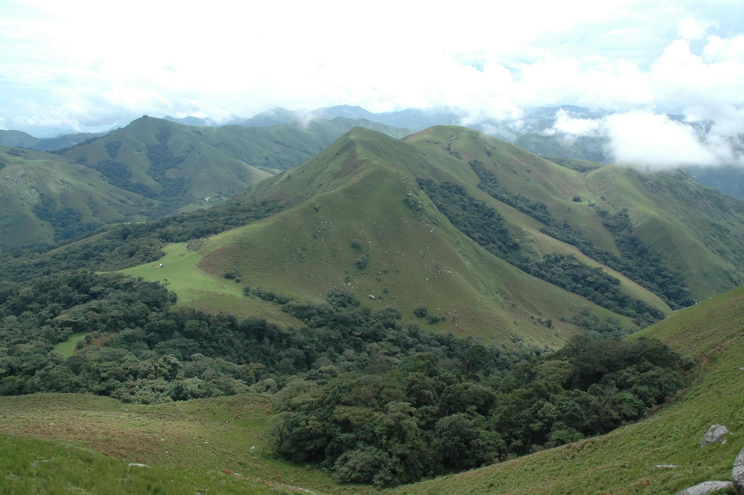 Kawegene-Gorilla-Reservat in Kamerun