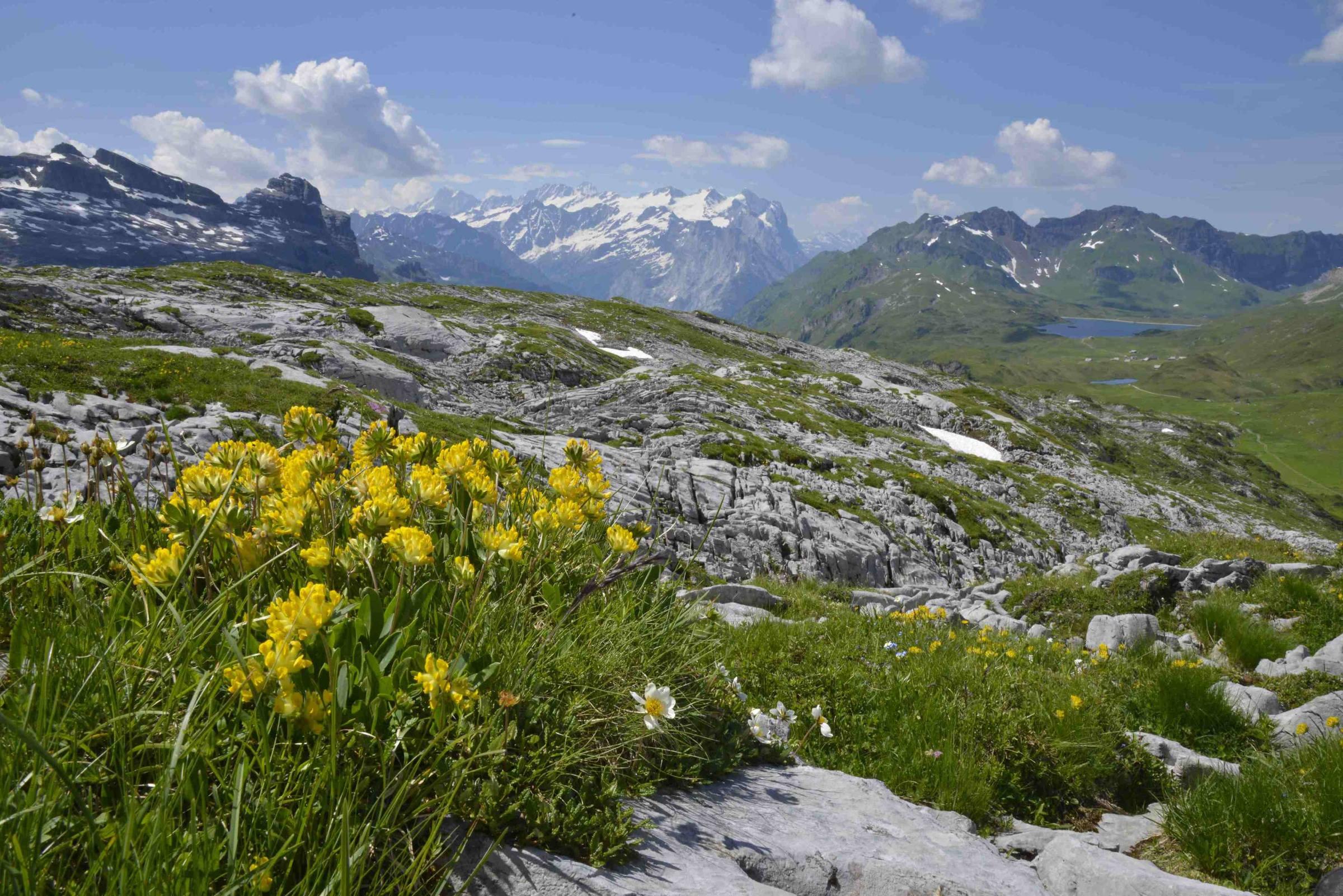 Graustock, sulle Alpi bernesi.