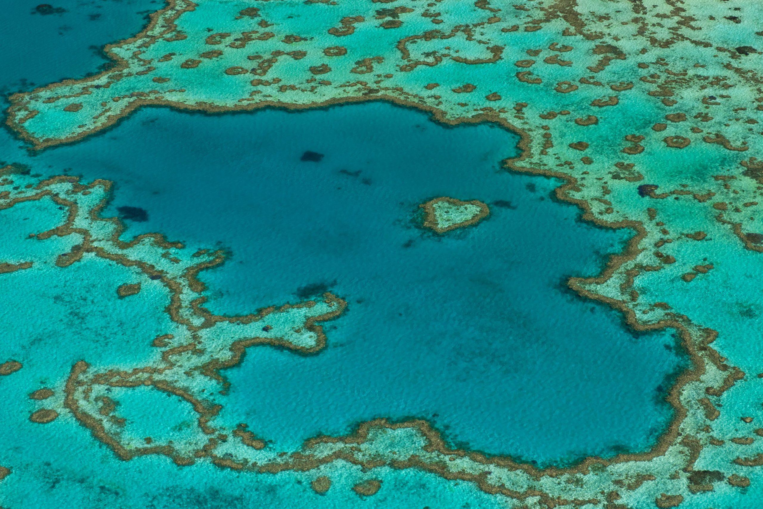 Luftaufnahme vom Great Barrier Reef